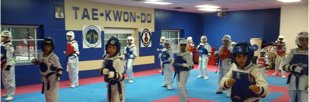West Island Tae Kwon Do About The School